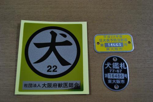 DSC_0273_convert_20101102184208.jpg