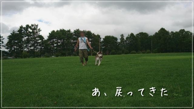 DSC_8012.jpg