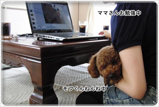 2010,7,9おデート8