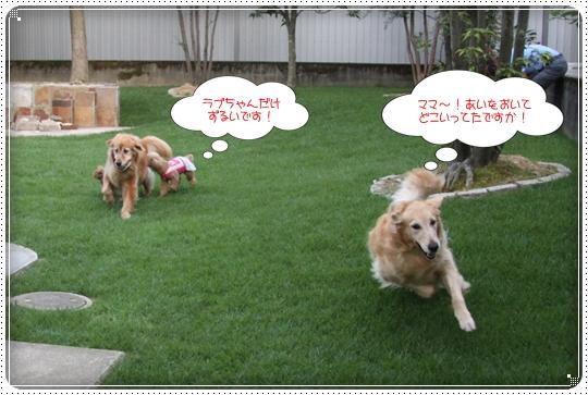 2010,7,10お散歩14