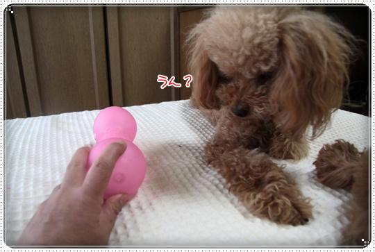 2010,7,13おもちゃ8