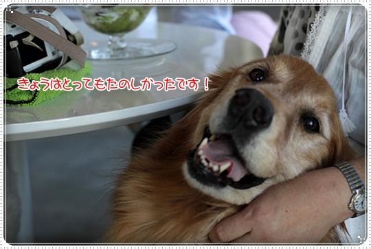 2010,7,17お散歩11