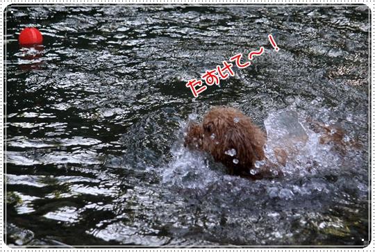 2010,7,21川遊び6