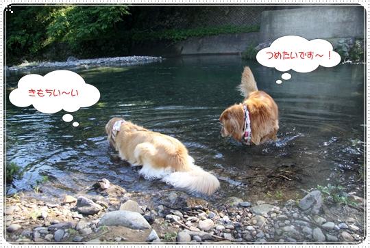 2010,7,21川遊び2