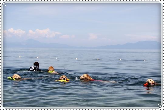 2010,7,22琵琶湖3