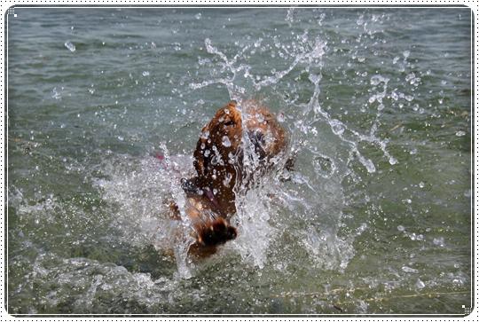 2010,7,22琵琶湖15