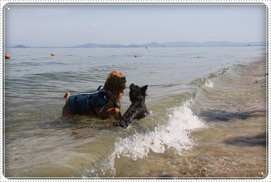 2010,7,22琵琶湖13