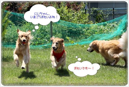 2010,7,23琵琶湖6