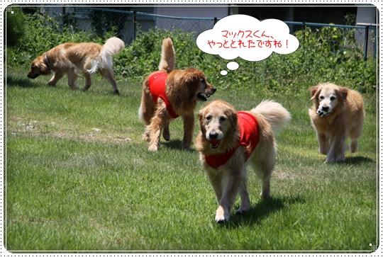 2010,7,23琵琶湖10