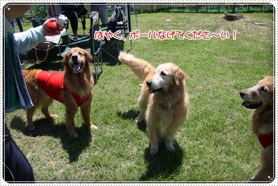 2010,7,23琵琶湖9