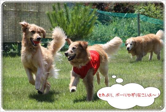 2010,7,23琵琶湖7