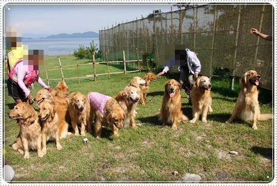 2010,7,23琵琶湖18