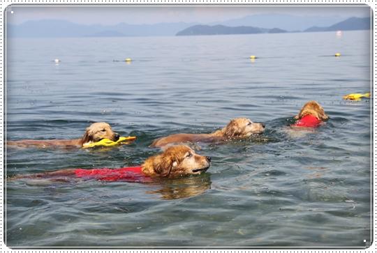 2010,7,23琵琶湖17