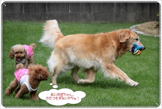 2010,7,25お庭遊び5