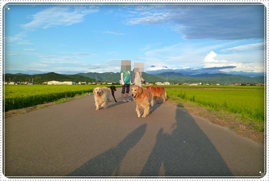 2010,7,29お散歩8