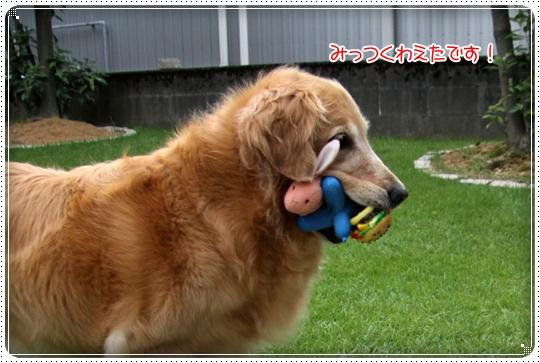 2010,7,31お庭遊び6