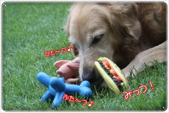 2010,7,31お庭遊び7