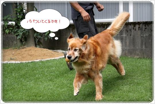 2010,8,2 お庭遊び6