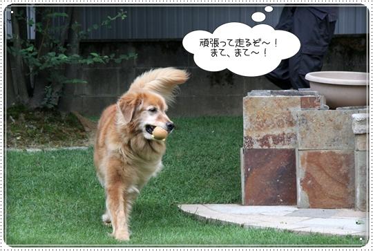 2010,8,2 お庭遊び3