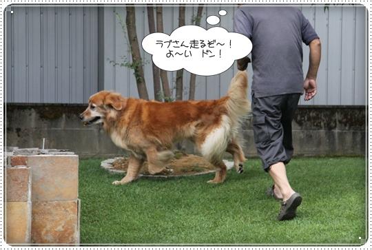 2010,8,2 お庭遊び2