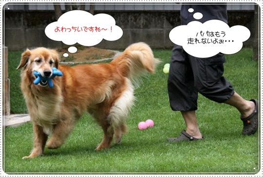 2010,8,2 お庭遊び7