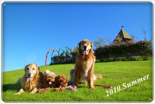 2010,8,4お散歩5