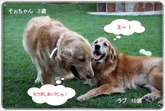 2010,8,5お庭遊び11