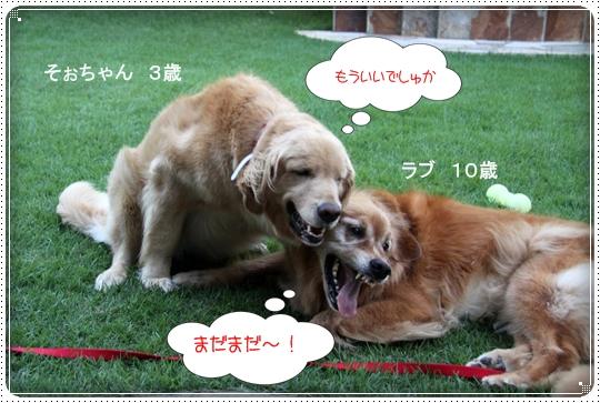 2010,8,5お庭遊び10