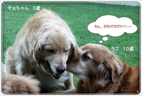 2010,8,5お庭遊び8