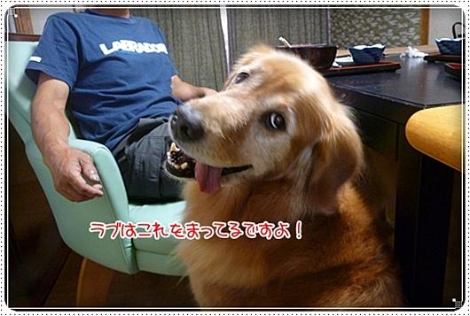 2010,8,9お庭遊び12