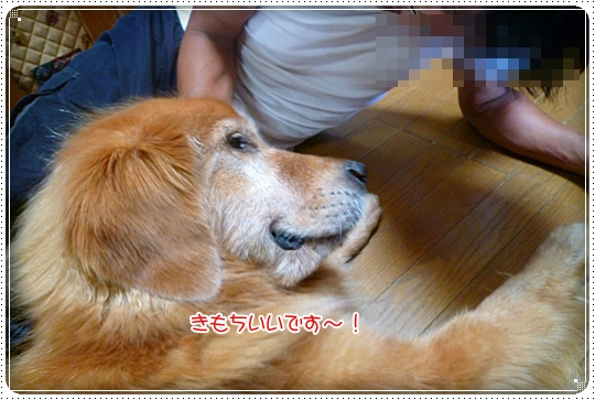 2010,8,15お庭遊び11