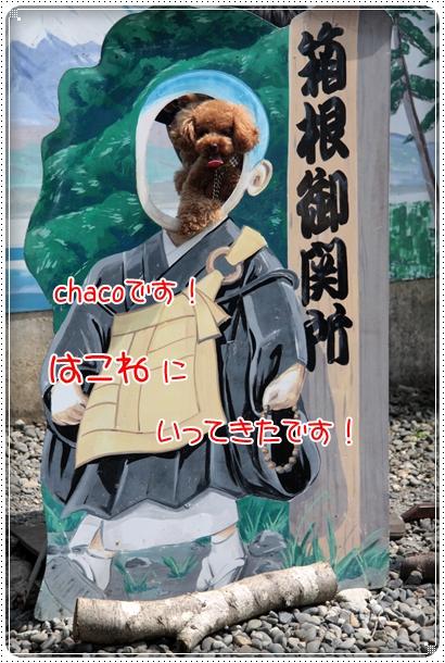2010,8,17箱根2