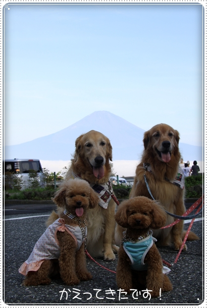2010,8,17箱根1