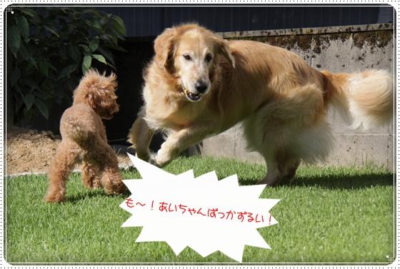 2010,8,28お庭遊び4