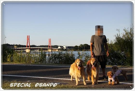 2010,8,27お散歩4