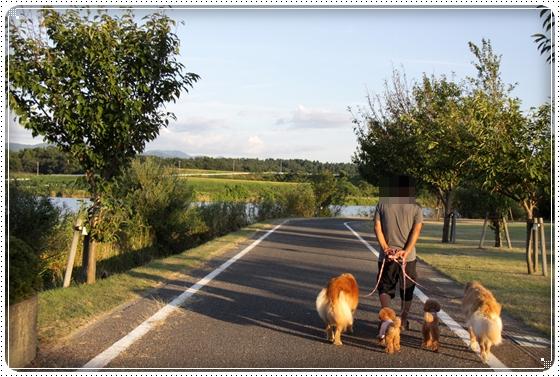 2010,8,27お散歩6