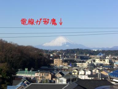 年末年始のきいちゃん 013.jpg