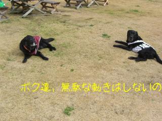 館山にて4