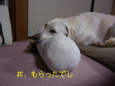枕大好き2