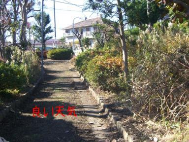 イタチ川散歩1