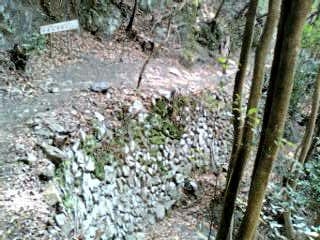 熊野古道♪