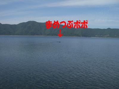 本栖湖1016-1