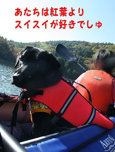 四尾連湖1106-1