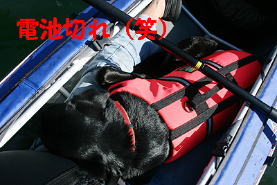 四尾連湖1106-4