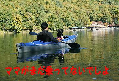 四尾連湖1106-9