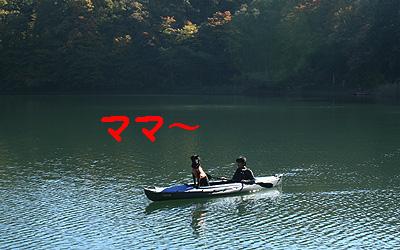 四尾連湖1106-6