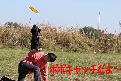 ボルト練習6
