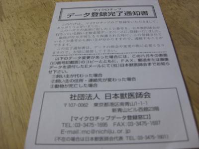 maikurotippu_convert_20101225084408.jpg