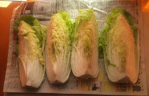 白菜つけもの