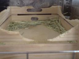 麗華のボックス